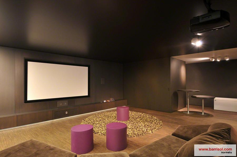 loisirs le plafond tendu barrisol dans vos espaces de loisirs. Black Bedroom Furniture Sets. Home Design Ideas